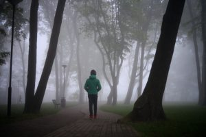 Chicago City Park on Foggy Day - Person walking into the fog, staring at the trees. You could get help with depression treatment in Chicago, IL from LifePath Therapy. Your life can feel hopeful again with video counseling in Illinois and Depression Therapy in Chicago, IL 60602